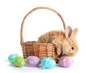 Een vrolijk Pasen